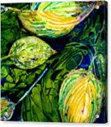 Indriel Blue Hosta Acrylic Print