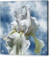 Iris In The Clouds Acrylic Print
