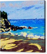 Island Coast Acrylic Print