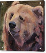 It's Good To Be A Bear Acrylic Print