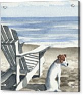 Jack Russel Terrier At The Beach Acrylic Print