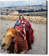Jerusalem From Mount Olive Acrylic Print by Thomas R Fletcher