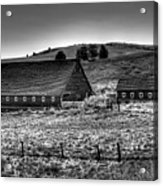Johnson Road Barns Acrylic Print