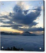 Jungle Sunrise Acrylic Print