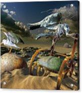 K205 Acrylic Print by Radoslav Penchev
