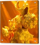 Karco Gold Acrylic Print by Arlin Jules