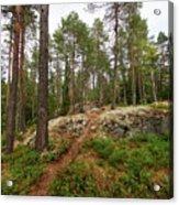 Kaukaloistenkallio Hillside View Acrylic Print