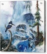 Kingfisher's Realm Acrylic Print