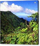 Koolau Summit Trail Acrylic Print