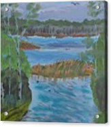 Lake Okahumpka Park Acrylic Print