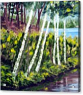 Lakeside Birches Acrylic Print