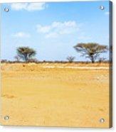 Landscape Near Laisamis, Kenya Acrylic Print