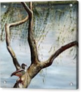 Landscape With Bird In A Tree Acrylic Print