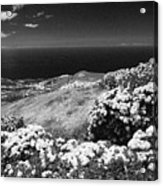 Landscape With Hydrangeas Acrylic Print