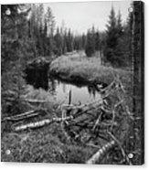 Liesijoki.  Seitseminen National Park Acrylic Print