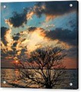Light Show Acrylic Print