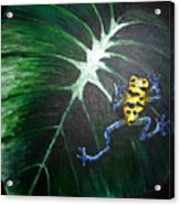 Little Frog In A Big World Acrylic Print