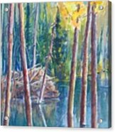 Little Mountain Beaver Pond 04 Acrylic Print