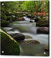 Little Pigeon River Acrylic Print