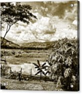 Llanos Venezolanos Acrylic Print