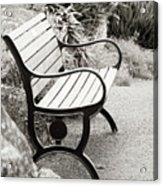 Lone Bench In The Park. Acrylic Print