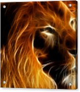 Lord Of The Jungle Acrylic Print