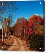Maine Fall Acrylic Print