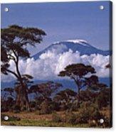 Majestic Mount Kilimanjaro Acrylic Print