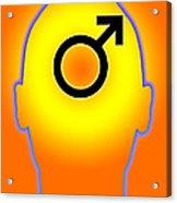 Male Symbol Acrylic Print