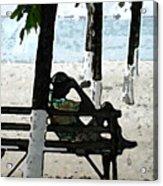 Man On Beach Acrylic Print