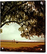 Mandeville Lakefront Acrylic Print