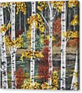 Manitoba Birch  Acrylic Print by Lynn Huttinga