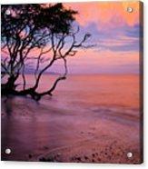 Maui Sunset Acrylic Print