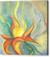 Menopause Acrylic Print