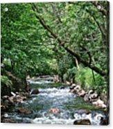 Minnehaha Creek Acrylic Print