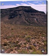 Mojave National Preserve Acrylic Print