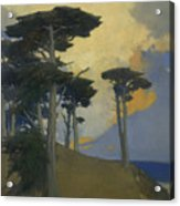 Monterey Cypress Acrylic Print