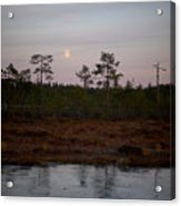 Moon Over Wetlands Acrylic Print
