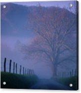 Morning Fog, #1, Smoky Mountains, Tennessee Acrylic Print