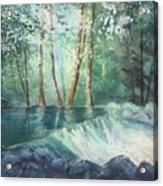 Mosquito Creek 2 Acrylic Print