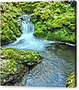 Mossy Moine Falls Acrylic Print