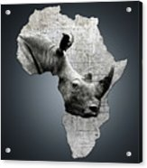 Mother Africa With A Rhino  Acrylic Print