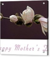 Mothers Day Card Acrylic Print