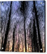 Motion Blurred Trees In A Forest Acrylic Print