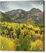 Mount Timpanogos Fall Colors Acrylic Print