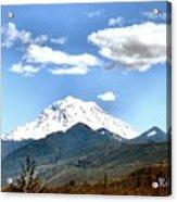 Mt Rainier Washington Acrylic Print