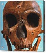 Neanderthal Skull Acrylic Print