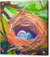 Nest Of Prosperity 6 Acrylic Print