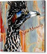 New Mexico Roadrunner Acrylic Print