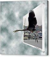 No Fly Zone Acrylic Print